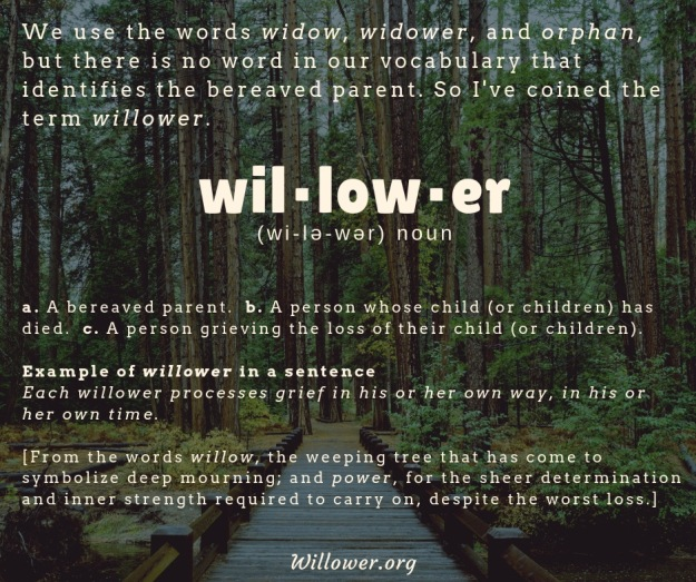 WillowerDefinedWoods